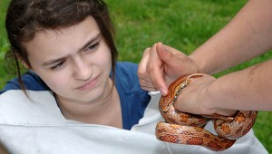 Park Ranger Amy Redmond shows a student from Hawkins Middle School a corn snake during a presentation about snakes in Tennessee. There were 11 learning stations that kids rotated between on Environmental Awareness Day at Old Hickory Lake. The U.S. Army Corps of Engineers Nashville District sponsors events like this to draw awareness to subjects in science, technology, engineering and mathematics. (Photo by Lee Roberts)