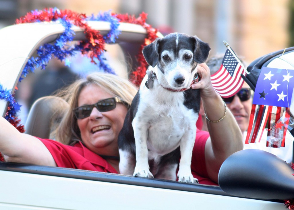 Judge Amanda McClendon of the Second Circuit Court honors veterans with her pooch during the Nashville Veteran's Day Parade Nov. 11, 2013. (Photo by Lee Roberts)